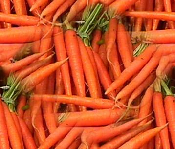01-carrot-background